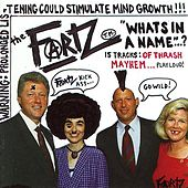 Play & Download What's In A Name...? by The Fartz | Napster