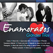 Grandes Tríos Volumen 2 by Various Artists