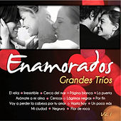 Play & Download Grandes Tríos Volumen 1 by Various Artists | Napster