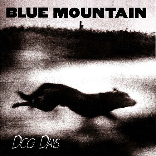 Play & Download Dog Days [Remaster] by Blue Mountain | Napster