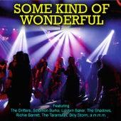 Some Kind of Wonderful von Various Artists