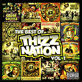 Play & Download The Best of Thizz Nation Volume 1 by Various Artists | Napster