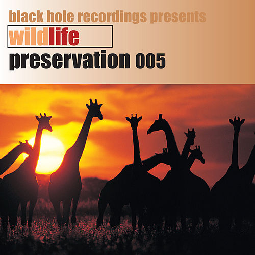 Play & Download Wildlife Preservation 005 by Various Artists | Napster