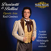 Play & Download Donizetti & Bellini: Operatic Arias by Raúl Giménez | Napster