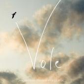 Play & Download Vole (2 générations chantent pour la 3ème) - Single by Alain Souchon | Napster