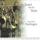 Play & Download Evert van de Veen op het Hinsz Orgel by Evert van de Veen | Napster