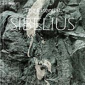 Play & Download SIBELIUS (The Essential) by Various Artists | Napster