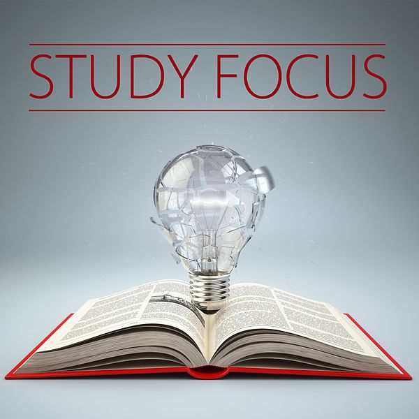 an analysis of the focus in religious studies By richard t elms, edd washington state  religious values and behaviors allowed the students to focus their  with other studies that suggest religious.