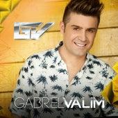 Gabriel Valim by Gabriel Valim