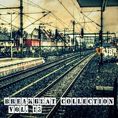 Breakbeat Collection, Vol.13 by Various Artists