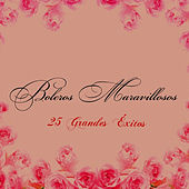 Play & Download Boleros Maravillosos - 25 Grandes Éxitos by Various Artists | Napster