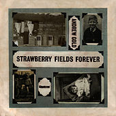 Play & Download Strawberry Fields Forever by Andrew Gold | Napster