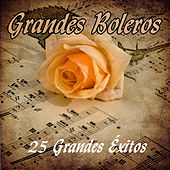 Play & Download Grandes Boleros - 25 Grandes Éxitos by Various Artists | Napster