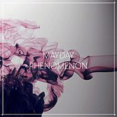 Play & Download Phenomenon by Mayday | Napster