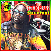 Play & Download Survival by The Ethiopians | Napster