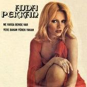 Play & Download Ne Varsa Bende Var / Yere Bakan Yürek Yakan by Ajda Pekkan | Napster