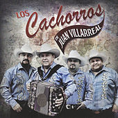 Play & Download Cachorreando - 40 Años by Los Cachorros de Juan Villarreal | Napster