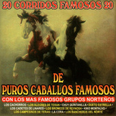 Play & Download 20 Corridos Famosos De Puros Caballos Famosos by Various Artists | Napster