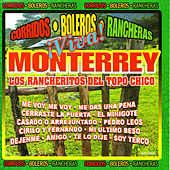 Play & Download Viva Monterrey by Los Rancheritos Del Topo Chico | Napster