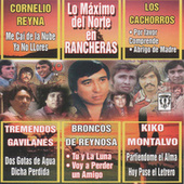 Play & Download Lo Maximo Del Norte En Rancheras by Various Artists | Napster