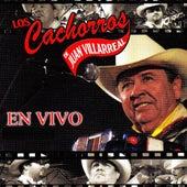 En Vivo by Los Cachorros de Juan Villarreal