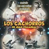 Play & Download Cuando Las Estrellas Brillaban by Los Cachorros de Juan Villarreal | Napster