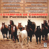Play & Download Estampida De Corridos De Purititos Caballos by Various Artists | Napster