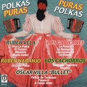 Play & Download Polkas Puras, Puras Polkas by Various Artists | Napster