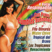 Play & Download A Bailar Respingadito Con Puras Cumbias Buenonas by Various Artists | Napster