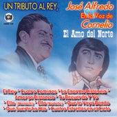 Un Tributo Al Rey, Jose Alfredo En La Voz De Cornelio by Cornelio Reyna