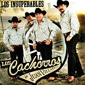 Play & Download Los Insuperables by Los Cachorros de Juan Villarreal | Napster