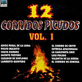 12 Corridos Picudos, Vol. 1 by Various Artists