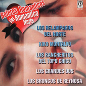 Boleros Romanticos Del Romantico Norte by Various Artists