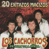Play & Download 20 Exitazos Macizos by Los Cachorros de Juan Villarreal | Napster