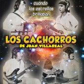 Cuando Las Estrella Brillaban by Los Cachorros de Juan Villareal