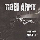 Play & Download Prisoner of the Night by Tiger Army | Napster