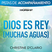 Play & Download Dios es Rey (Muchas aguas) by Christine D'Clario | Napster