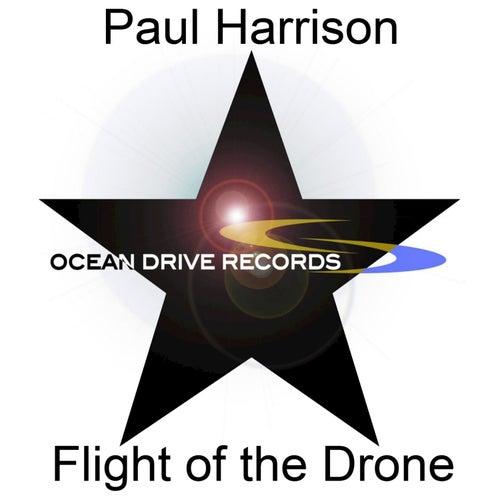 Flight of the Drone by Paul Harrison