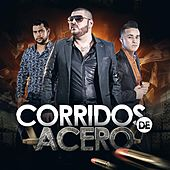 Play & Download Corridos de Acero by Various Artists | Napster
