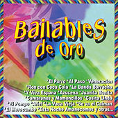 Play & Download Bailables de Oro by Various Artists | Napster