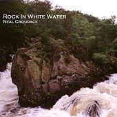 Rock in White Water by Neal Croudace