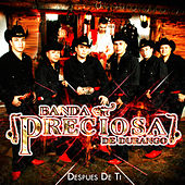 Play & Download Despues de Ti by Banda Preciosa De Durango | Napster
