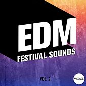 EDM Festival Sounds, Vol. 2 by Various Artists