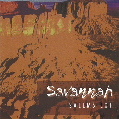 Salem's Lot by Ben Watt