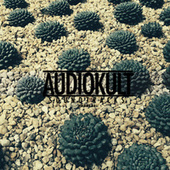 Audiokult Soundtracks, Vol. 03 von Various Artists