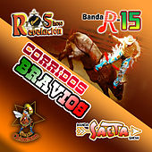 Corridos Bravios by Various Artists