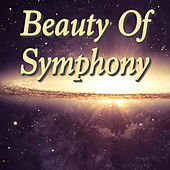 Beauty Of Symphony by Various Artists