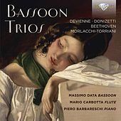 Play & Download Bassoon Trios by Mario Carbotta Massimo Data | Napster