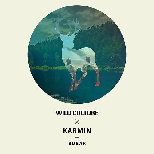 Sugar (Remix - EP) by Wild Culture