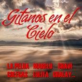 Play & Download Gitanos en el Cielo by Various Artists | Napster